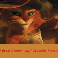 Niemcy - śladami Braci Grimm