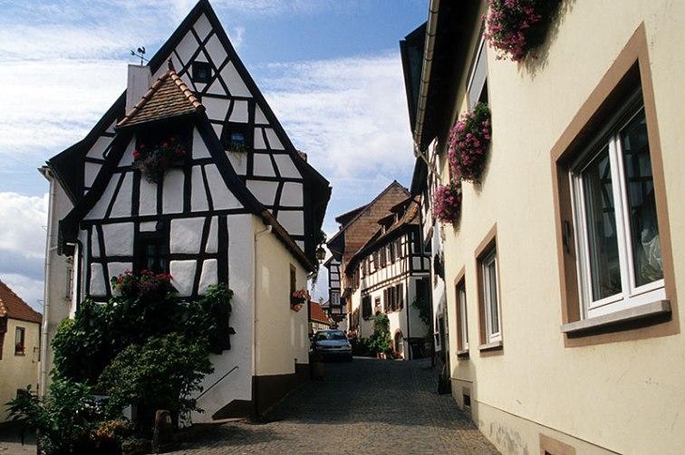 Pfalz_49
