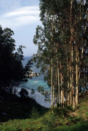 Islas-Cies_galicja_025p