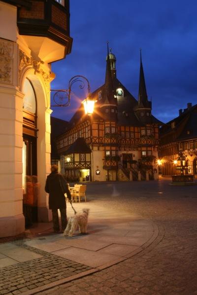 Harz-do-sieci_5736