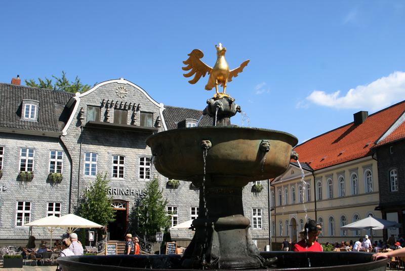 Harz-do-sieci_6806