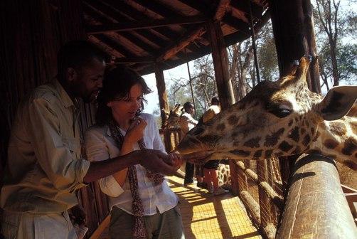 Giraffe_055p