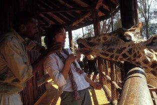 Giraffe_059p