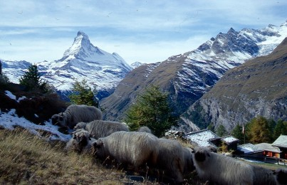 Matterhorn ze szlaku Saas-Fee - Zermatt, fot. Paweł Wroński
