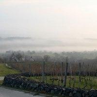 Węgry / Somló - wino na wulkanie