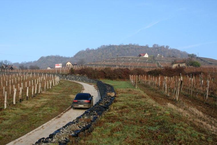 Somlói-hegy, zerodowany wulkaniczny stożek, na którego stokach rośnie winorośl, fot. Paweł Wroński