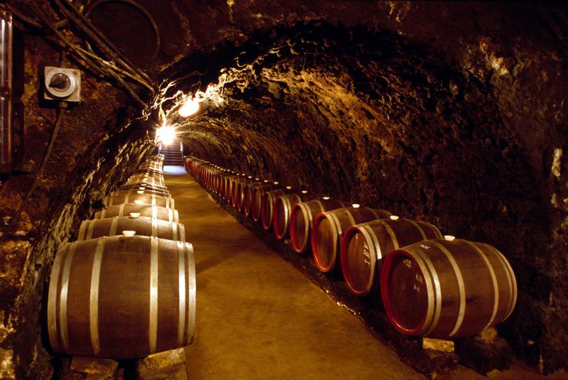 Tolcsva w Tokaju. Wydrążone w wulkanicznym tufie piwnice, którymi włada teraz firma Oremus, mają ponad 700 lat, fot. Paweł Wroński