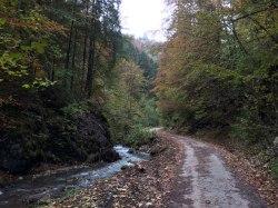 Droga ze wsi Liptovské Revúce (szlak żółty), fot. Paweł Wroński
