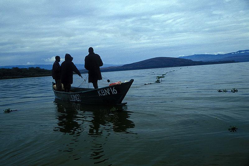 Lake Naivasha, fot. Paweł Wroński