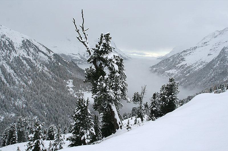 Z Ötztal do Val Passiria przez Timmelsjoch, fot. Paweł Wroński
