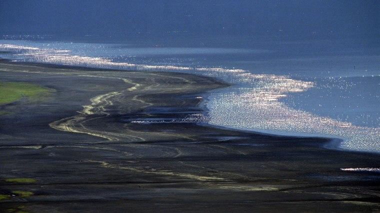 Biało różowa wstęga widoczna na wodach Jeziora Nakuru, to setki tysięcy żerujących przy jego brzegach flamingów, fot. Paweł Wroński