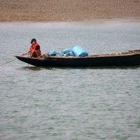 Sundarbany - słone Usta Gangesu