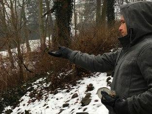 Nakarmić sikorkę. Zimowe Ptakoliczenie w łazienkach - styczeń 2018, fot. Paweł Wroński