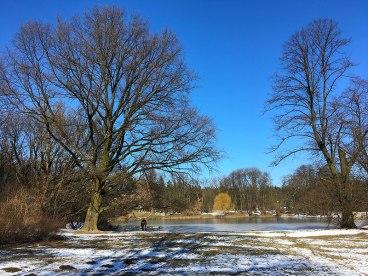 W parku nad południowo wschodnim stawem, zwanym też Kajakowym albo ze względu na połączenie z mniejszymi akwenami - Stawami Kaczymi, fot. Paweł Wroński