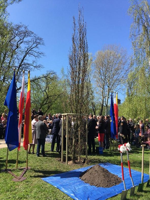 Nadanie imienia parkowi Tadeusza Mazowieckiego w Warszawie, fot. Paweł Wroński