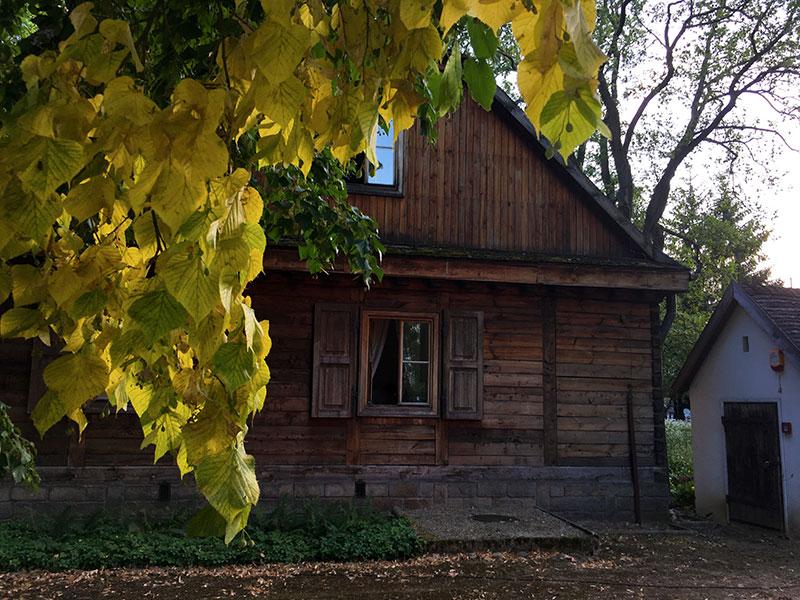 A w ogrodzie już jesień, choć to dopiero lipiec, fot. Paweł Wroński