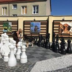 Zwierzyniec Józefa Wilkonia w Piasecznie, fot. Paweł Wroński