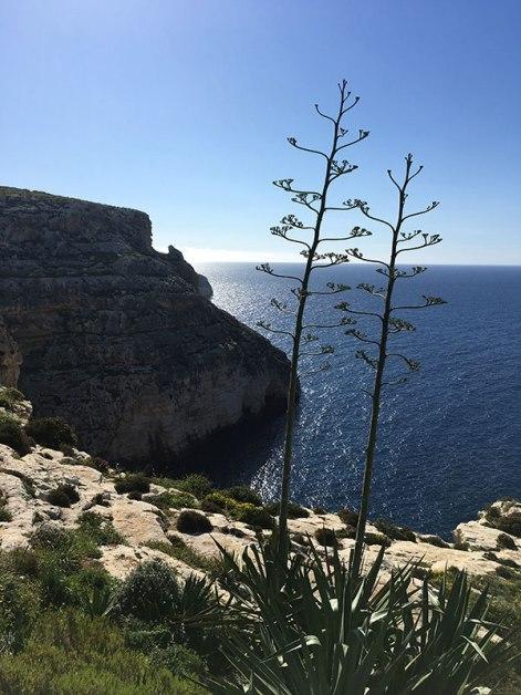 Rejon wybrzeża z jaskiniami Blue Grotto - widok z promenady biegnącej krawędzią klifu, fot. Paweł Wroński