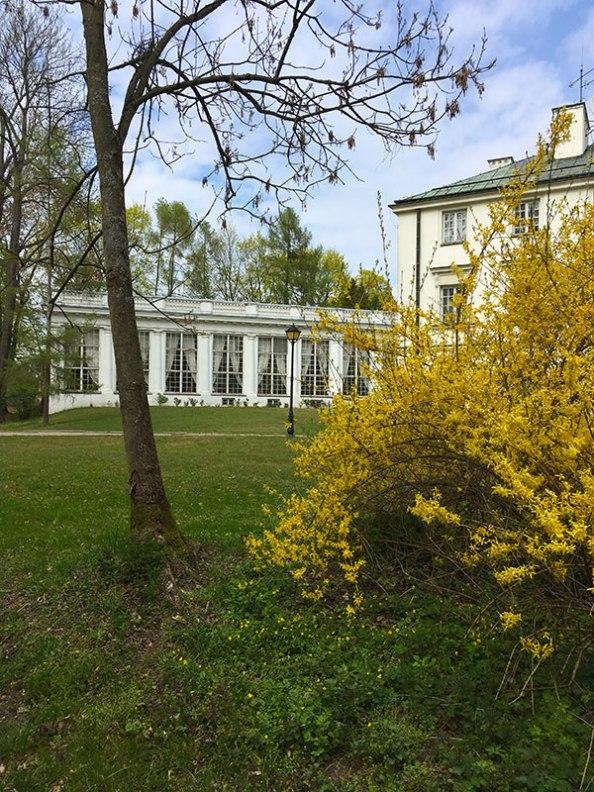 Jabłonna - oranżeria, dziś pełni funkcje galerii sztuki, fot. Paweł Wroński
