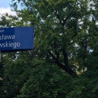 Klonsrebrzysty nacześćBartoszewskiego