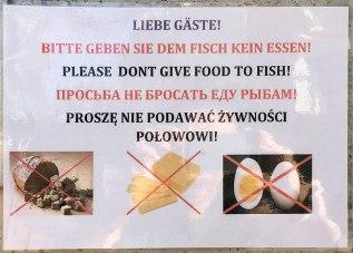 Hotelowi poligloci, jak umieli tak przygotowali napisy w językach najczęściej używanych przez przybyszów, fot. Paweł Wroński