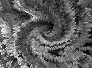 Kora grochodrzewu (akacji), po przekształceniu w 3D fot. Paweł Wroński