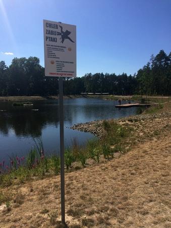 Park Glinianki - nowy imponujący teren rekreacyjny w Sulejówku, fot. Paweł Wroński