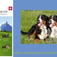 Szwajcariazaprasza napsiąparadę