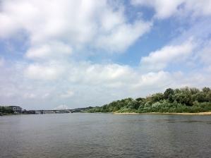 Dziewicze nadwiślańskie łęgi na prawym brzegu Wisły, fot. Paweł Wroński
