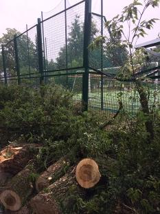 Zwalony klon jesionolistny w Parku Szypowskiego na Pradze Południe zniszczył piłkochwyt i ogrodzenie Jordanka, fot. Paweł Wroński