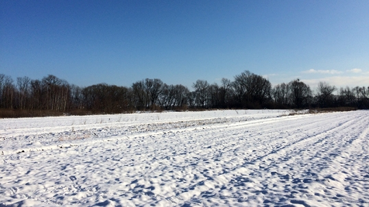 Spacer po Wilanowskich Błoniach, fot. Paweł Wroński