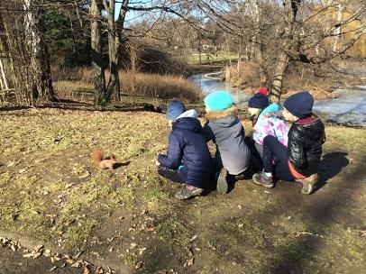 Zachwyt nad rudą wiewiórką, fot. Paweł Wroński